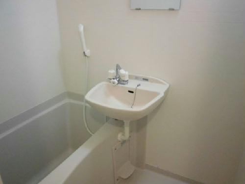 レオネクストパウダウスー 208号室の風呂