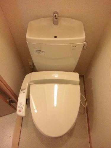 レオネクストパウダウスー 208号室のトイレ