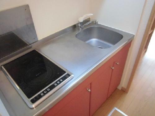 レオネクストパウダウスー 208号室のキッチン