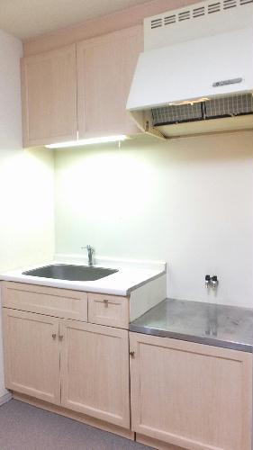レオパレスグロリアスⅠ 105号室のキッチン