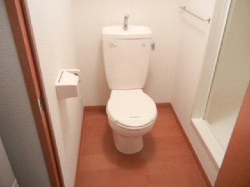 レオパレスアルテミス 202号室のトイレ