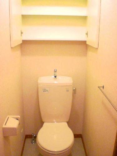 レオパレスマンダリーヌ 103号室のトイレ