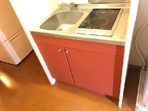 レオパレスNAGAKURA 206号室のキッチン