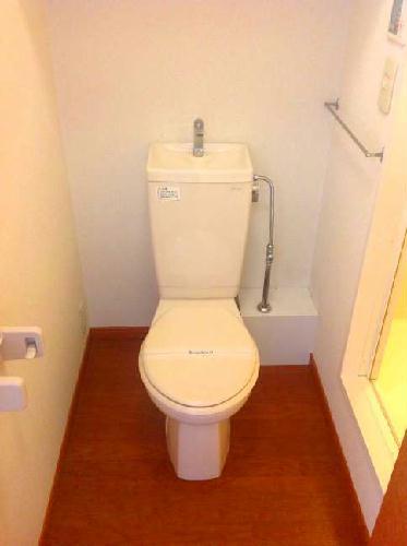 レオパレス一の宮 203号室のトイレ