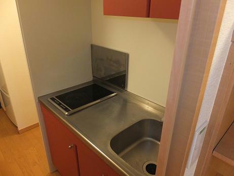 レオネクストシュラインRed 101号室のキッチン