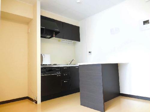 レオネクストステラⅢ 105号室のキッチン