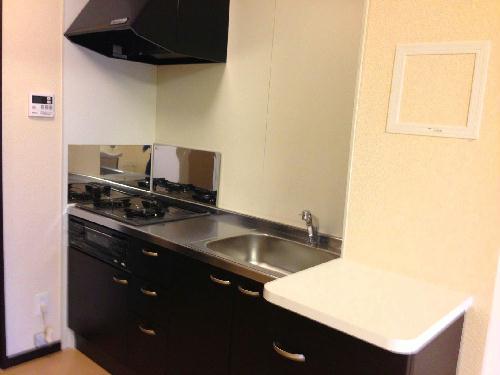 レオネクストパティオⅡ 202号室のキッチン