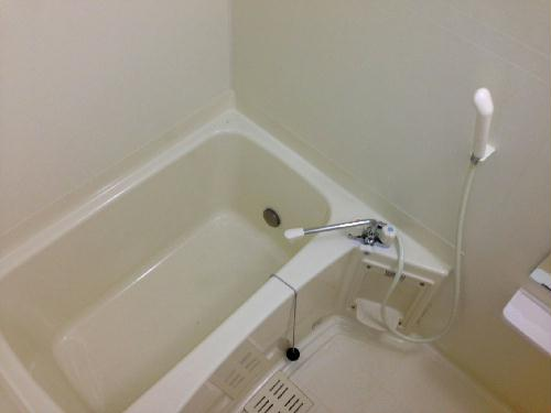 レオネクストパティオⅡ 202号室の風呂