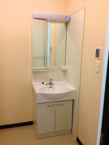 レオネクストパティオⅡ 202号室の洗面所