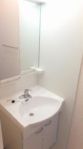 レオネクストメゾンエスポワール 106号室の洗面所