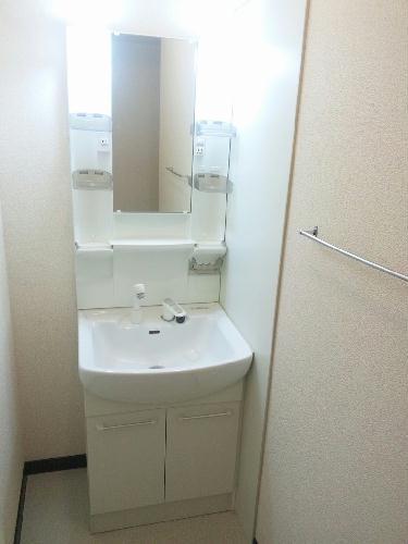 レオネクストタウンコート羽生M 103号室の洗面所
