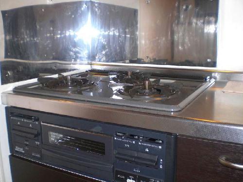 レオネクストインディゴⅡ 206号室のキッチン