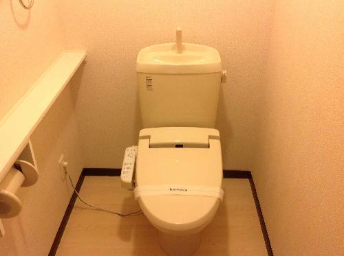 レオパレススカイ 203号室のトイレ