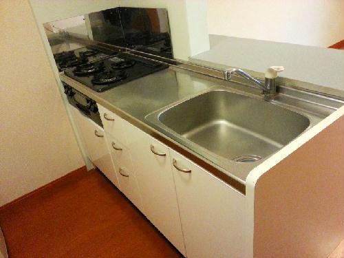 レオパレス岡Ⅱ 104号室のキッチン
