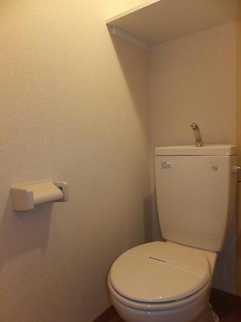 レオパレスグレープヒルA 202号室のトイレ