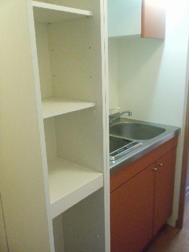 レオパレスベルウィング 201号室のトイレ