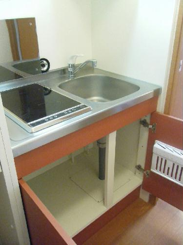 レオパレスベルウィング 206号室のキッチン