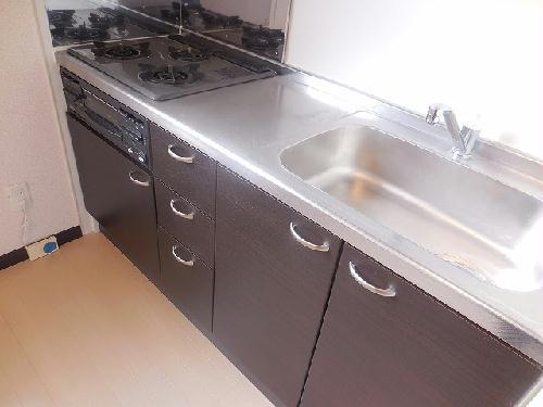 レオネクストヴィラージュ 103号室のキッチン