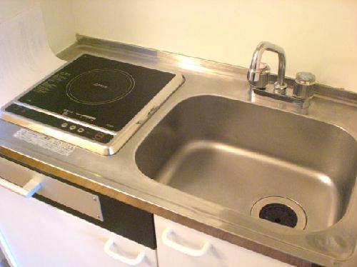 レオパレス高雄Ⅱ 202号室のキッチン