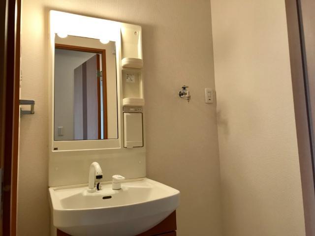 リバティーコート 205号室の洗面所