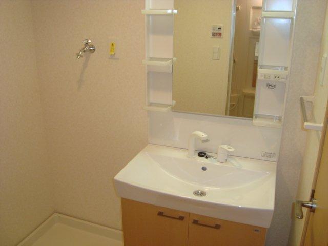エスポアール 00101号室の洗面所