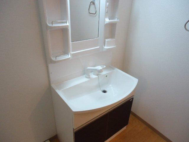 ロジェB 101号室の洗面所