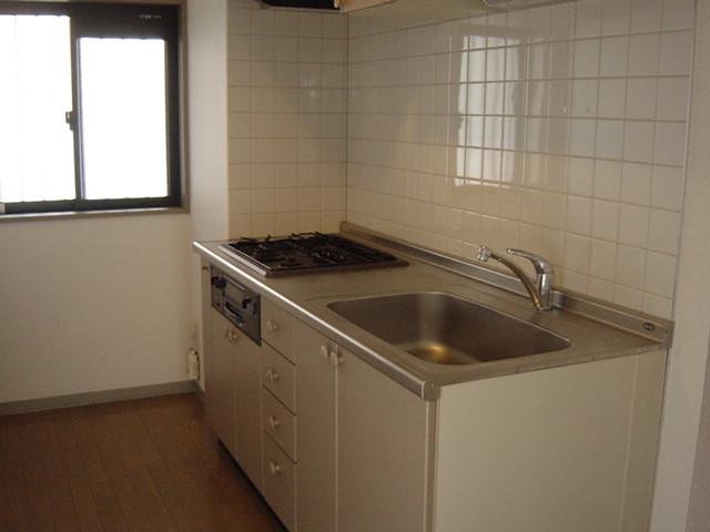 プラザ・ディア 301号室のキッチン