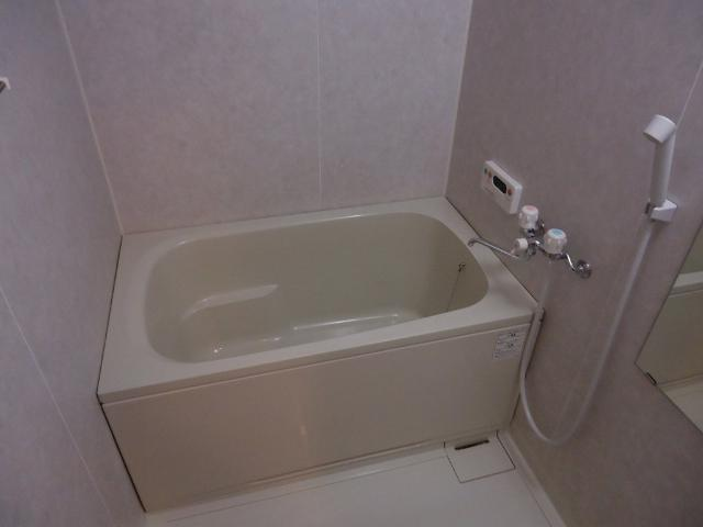 ビッグアップル 201号室の風呂