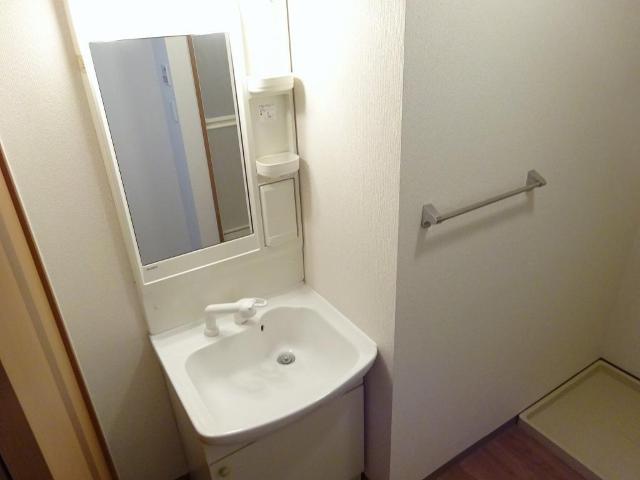 エクセルレモン 203号室の洗面所
