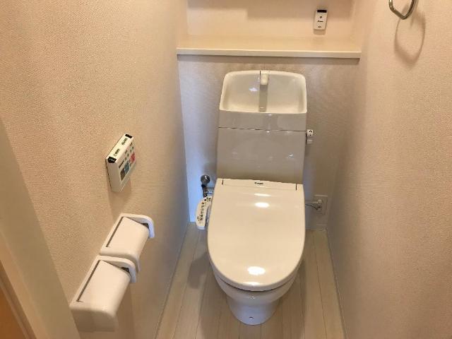 ルミナス 205号室のトイレ