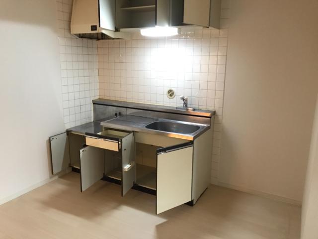 ディアエステート東大宮 00101号室のキッチン