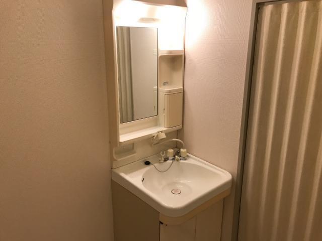 ディアエステート東大宮 00101号室の洗面所