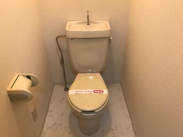 ディアエステート東大宮 00101号室のトイレ