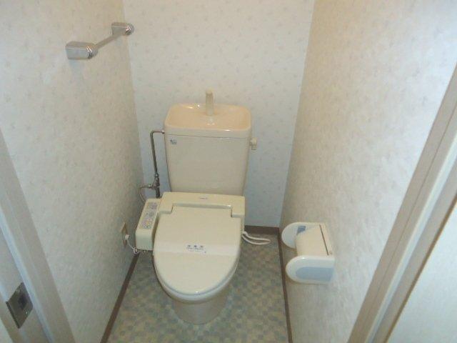 リヴィエール 305号室のトイレ