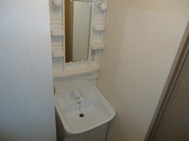 リヴィエール 201号室の洗面所