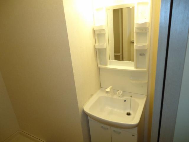 リヴィエールⅡ 00102号室の洗面所