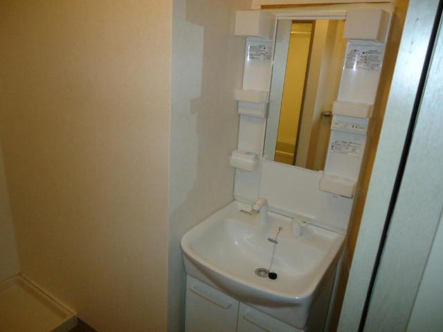 リヴィエールⅡ 00105号室の洗面所