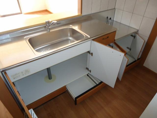 グリーンコート 202号室のキッチン