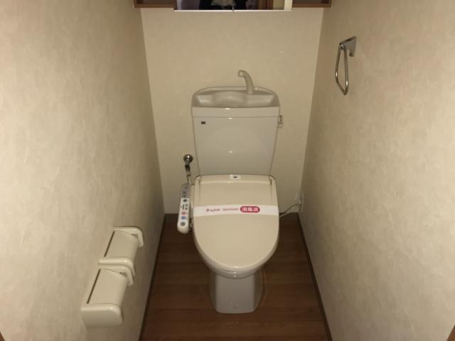 グリーンコート 102号室のトイレ