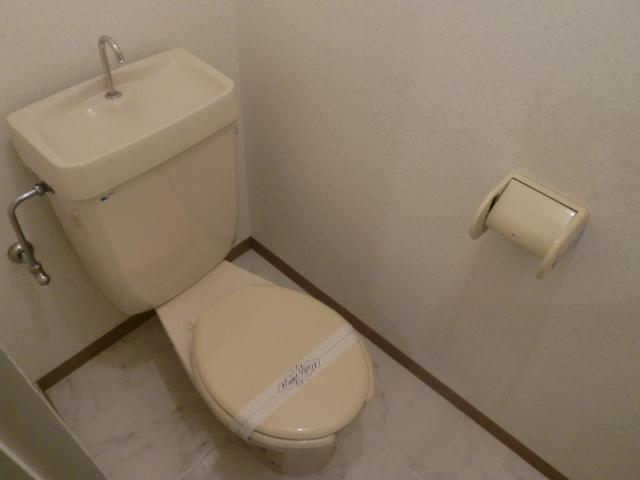 メゾンミヤマエ 202号室のトイレ