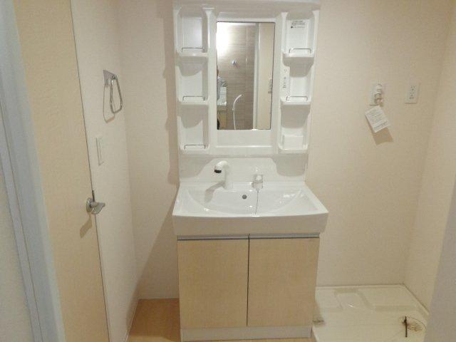 La Flore 201号室の洗面所