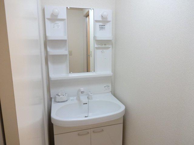 ルミナス田口 00101号室の洗面所