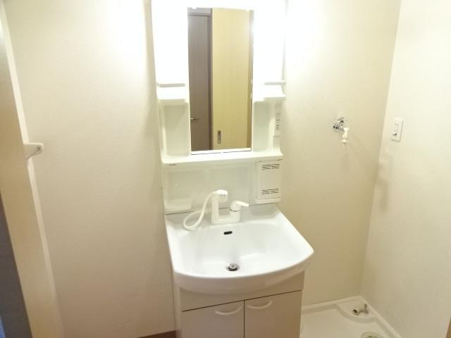 グランディア サリオ 101号室の洗面所