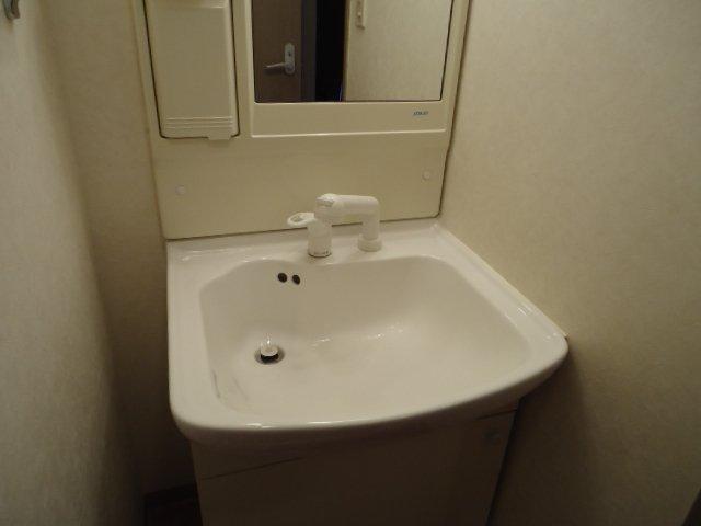 フォレスト粕川 C棟 206号室の洗面所