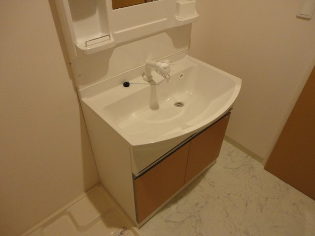 グレイシャス 203号室の洗面所