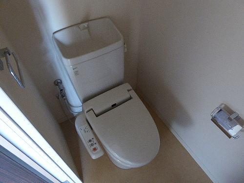 サーパス戸祭一丁目 301号室のトイレ