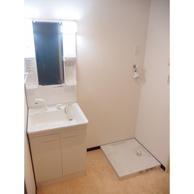 アムール Island 201号室の洗面所