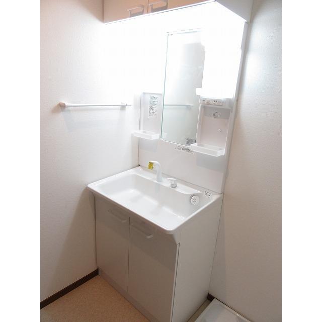 アムール 中央Ⅱ 101号室の洗面所