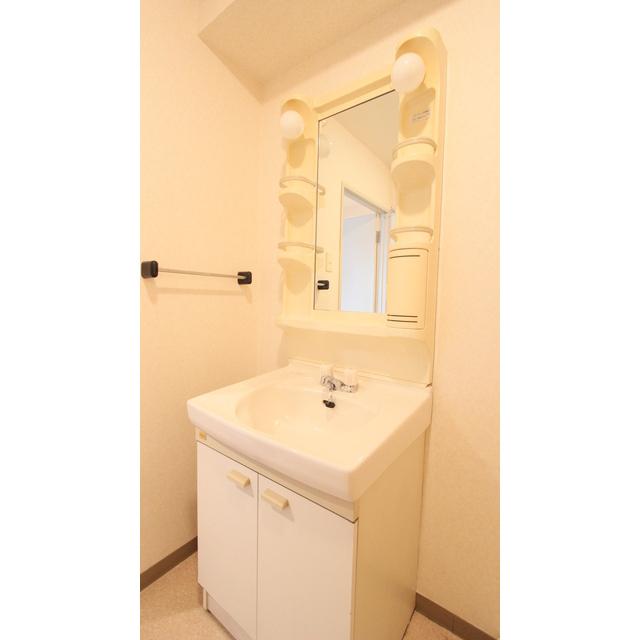 パストラル野沢壱番館 301号室の洗面所