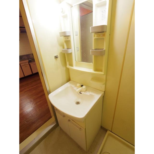 ロイヤルパレス渋谷 202号室の洗面所